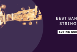 Best Banjo Strings In 2021: The Complete Guide
