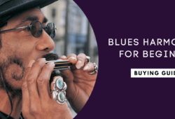Best Blues Harmonicas for Beginners In 2021