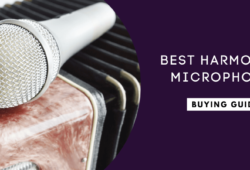 Best Harmonica Microphones In 2021 For Live Performance