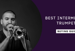 Best Intermediate Trumpets For The Money In 2021