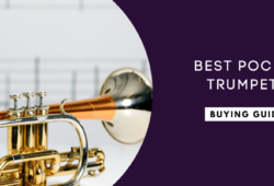 Best Pocket Trumpets In 2021: Buyer's Guide