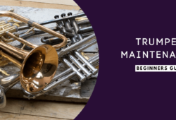 Trumpet Maintenance & Cleaning Guide For Beginners