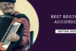Best Beginner Accordions In 2021: A Buying Guide
