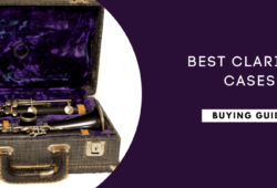 Best Clarinet Cases Reviewed In 2021