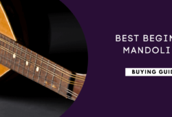 Best Beginner Mandolins In 2021: A Detailed Guide
