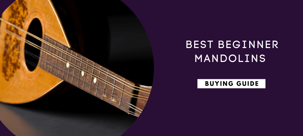 Best Beginner Mandolins