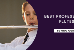 Best Professional Flutes To Buy In 2021