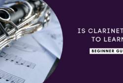 Is Clarinet Easy to Learn? Find out now!