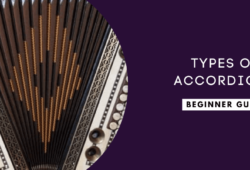 Types of Accordions: Which one is right for you?