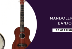 Mandolin vs Banjo: Understand All The Differences