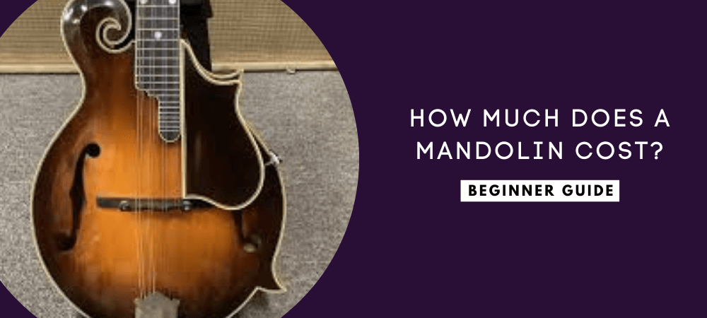 how much does a mandolin cost