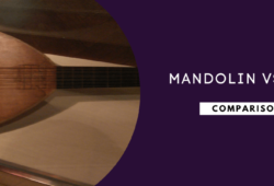 Lute vs Mandolin: Find Out The Differences and Similarities